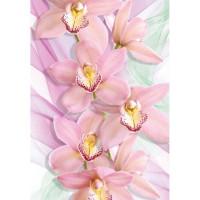 Фотообои Твоя планета Премиум Орхидеи 194х136 см