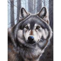Картина по номерам на картоне Белоснежка Волк Волк 3090-CS