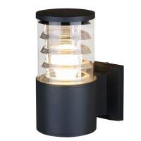 """Настенный светильник уличный Elektrostandard """"34;Techno """"34; 1408, 1xE27x60 Вт, цвет чёрный"""