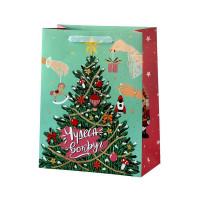 Пакет подарочный «Чудеса вокруг» 23x32 см